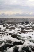 Beautiful seaside — 图库照片