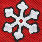 Closeup snowflake — Photo