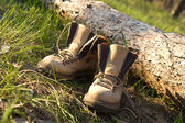 Pair of trekking boots in forest — Stock Photo