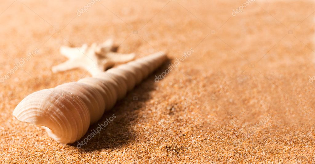 Abstract summer still-life over sea sand — Stock Photo #7371232