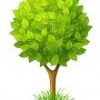 Tree with green leaves - Stockvectorbeeld