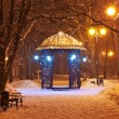 Decorated winter city park at night — Stock Photo