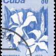 CUBA - CIRCA 1983 Mariposa — Stock Photo