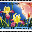 NORTH KOREA - CIRCA 1981 Iris Pseudacorus — Stock Photo