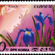 NORTH KOREA - CIRCA 1981 Iris Pallasii - Stock Photo