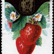 POLAND - CIRC1974 Strawberries — Stock Photo #7857508