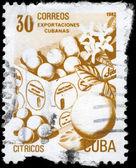 CUBA - CIRCA 1982 Fruit — Stock Photo