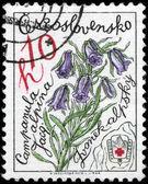 Czechosłowacja - około rozlegle alpejskie 1979 — Zdjęcie stockowe