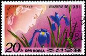 NORTH KOREA - CIRCA 1981 Iris Pallasii — Stock Photo