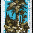 USSR - CIRCA 1966 Palms — Stock Photo