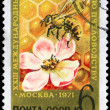 USSR - CIRCA 1971 Bee and Blossom - Stock Photo