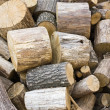 Fuelwood - Stock Photo