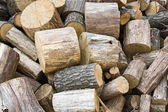 Fuelwood — Stock Photo