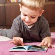 Cute boy reading book - Stock Photo