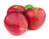 Fresh apples in closeup — Stok fotoğraf