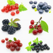 Stock Photo: Collage from fresh berries