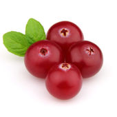 Cranberry with leaves of mint — Stock Photo