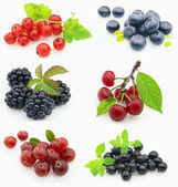 Collage from fresh berries — Stock Photo