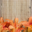 Flowers on  wooden background - Stockfoto