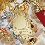 Awards — Stock Photo