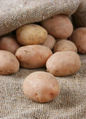 Pile of potatoes — Stock Photo
