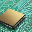 Microchips on a printed circuit board — Stock Photo #7703658