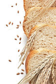 Rebanadas de pan y mazorcas de maíz — Foto de Stock