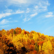 Beautiful autumn mountains — Foto de Stock