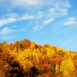 Beautiful autumn mountains — Photo