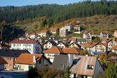 塞尔维亚人的小山村 — 图库照片
