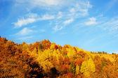 Bellissime montagne d'autunnale — Foto Stock