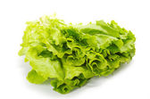 Green salad — Foto Stock
