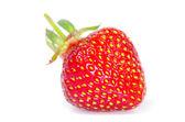 Strawberries — Стоковое фото