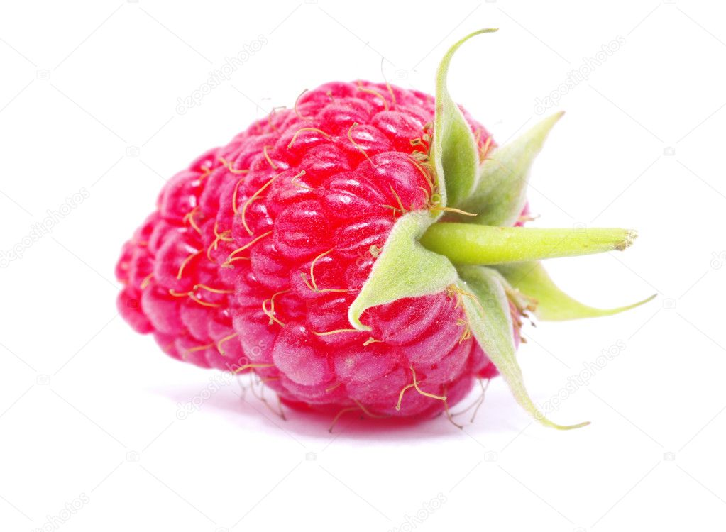Fresh raspberry closeup isolated on white background — Stock Photo #7060100