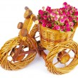 Bicycle vase with flowers — Foto de Stock