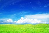 Landscape — Stock Photo