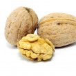 Stock Photo: Walnuts