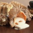 Salt in the seashell bath accessories background — Stock Photo #7330214