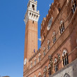 Stock Photo: Torre del Mangia, Sienna