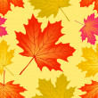 图库照片: Seamless pattern autumn maple leaves.