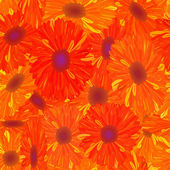 Seamless pattern yellow-orange flower. — Stock Photo