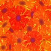 Kwiat żółto pomarańczowy wzór. — Zdjęcie stockowe
