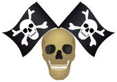 Skull with the crossed flags. — Stock Photo