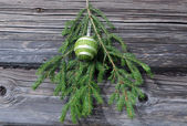 Christmas Tree Twig and Decoration — Stock Photo