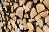 Closeup Woodpile — Stock Photo