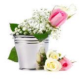 Beautiful Roses in metallic bucket — Stock Photo