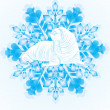 Walrus on the snowflake — Stock Vector