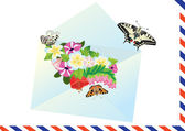 Carta, flores y mariposas — Vector de stock