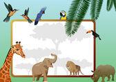 Animals and birds — Vecteur
