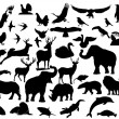 Royalty-Free Stock Vectorielle: Fauna.